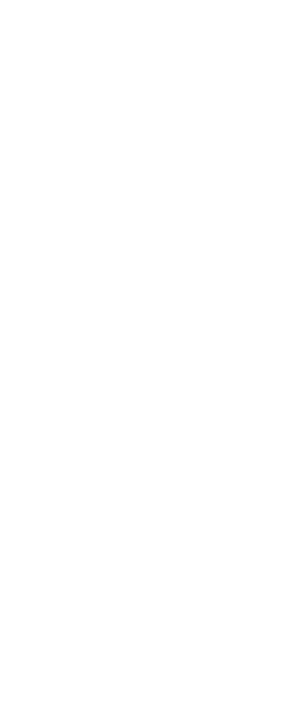 Nik Rebhuhn logo mark